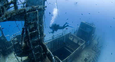 Azure Private Diving - Guided Diving and Trips