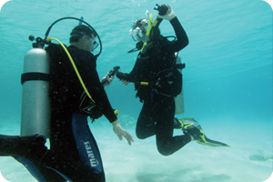 Neutral Buoyancy - Open Water Diver Training