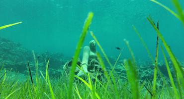 Mimosa dive site in Protaras Cyprus